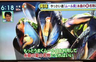 糸島産ムール貝取材TV番組